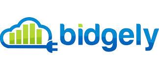 Bidgely.jpg